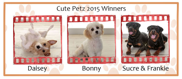 Cute Pets Competition, Village Photography Hebburn