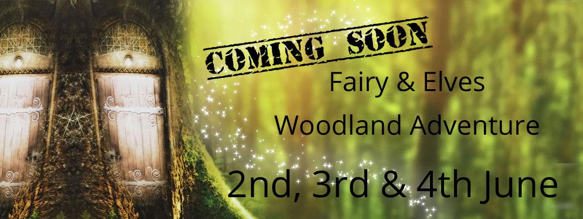 Fairies & Elves Woodland Adventure, Village Photography, Hebburn
